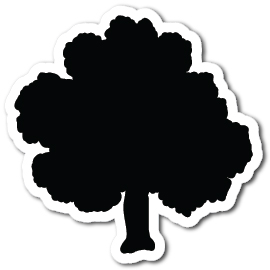 Tree Shape Magnets - Tree